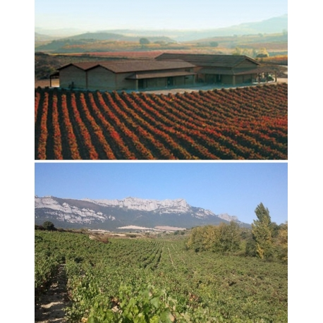 Pictures from Viñedos Sierra Cantabria (Rioja - Spain)