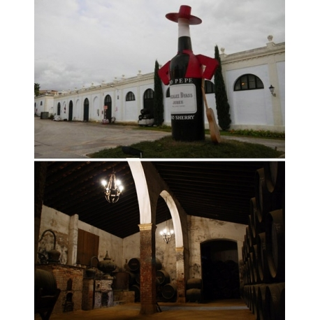 Pictures from Bodegas Tio Pepe (Jerez - Manzanilla - Spain)