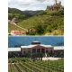 Pictures from Veramonte (Valle de Colchagua - Chile)