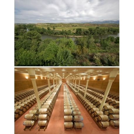 Pictures from Finca Valpiedra (Rioja - Spain)