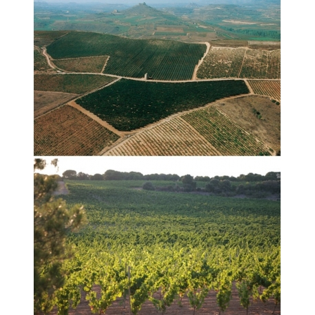 Pictures from Bodegas Sierra Cantabria (Rioja - Spain)