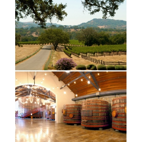 Images de Sebastiani Vineyards (Sonoma Coast - California - Etats Unis)