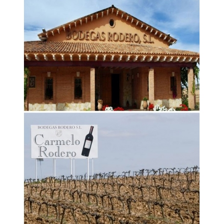 Pictures from Bodegas Rodero (Ribera del Duero - Spain)