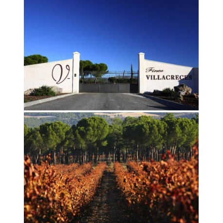 Pictures from Finca Villacreces (Ribera del Duero - Spain)