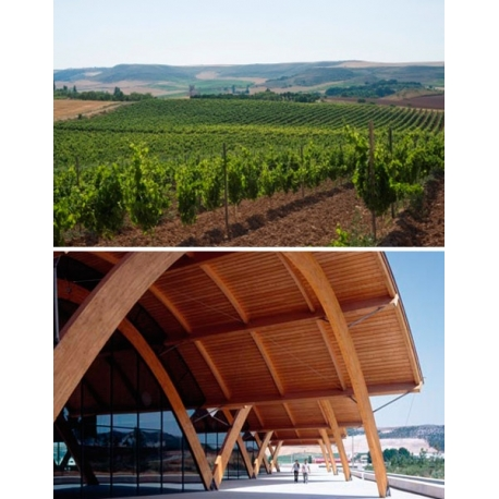 Pictures from Bodegas Protos (Ribera del Duero - Spain)