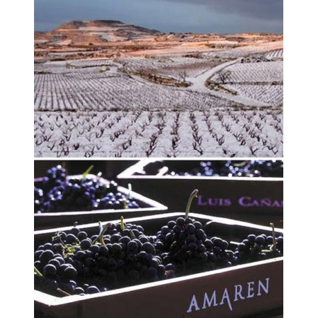 Pictures from Bodegas Amaren (Rioja - Spain)