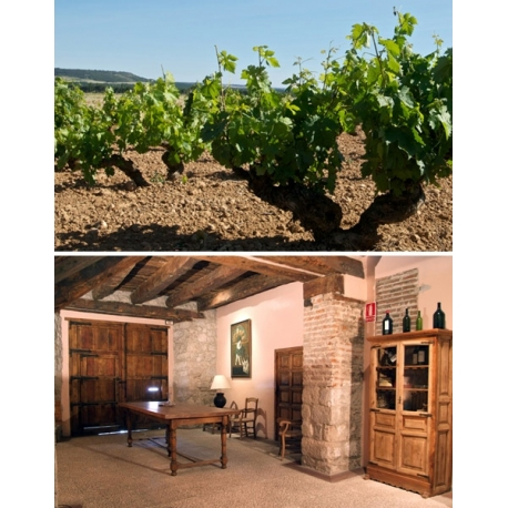 Pictures from Bodegas Mauro (V.T. Castilla y León - Spain)