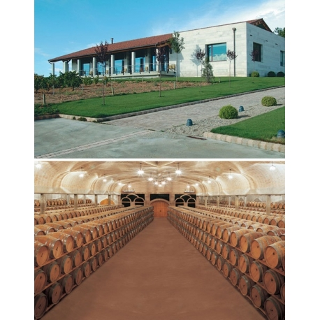 Pictures from Bodegas Hnos. Pérez Pascuas (Ribera del Duero - Spain)