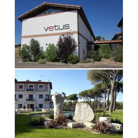 Pictures from Bodegas Vetus (Toro - Spain)