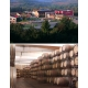 Pictures from Bodega Pirineos (Somontano - Spain)