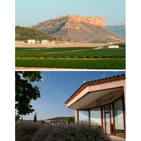 Pictures from Bodegas Juan Gil (Jumilla - Spain)