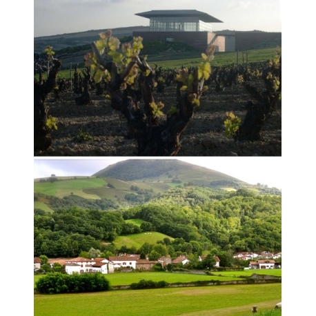 Pictures from Bodegas Baigorri (Rioja - Spain)