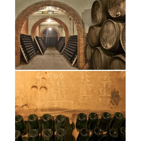 Pictures from Cavas Conde de Valicourt (Cava - Spain)