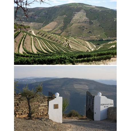Pictures from Quinta da Romaneira (Douro - Portugal)