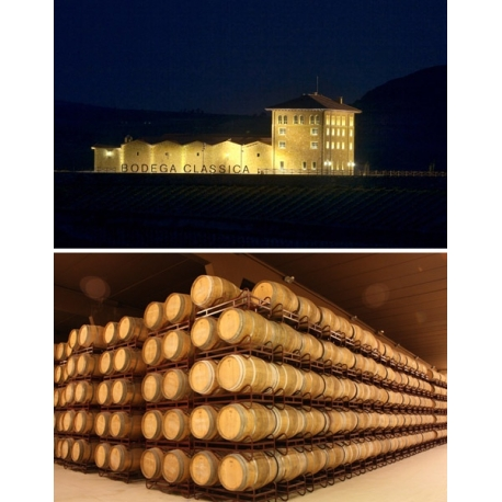 Pictures from Bodega Classica (Rioja - Spain)