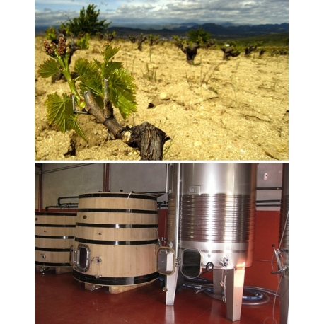 Pictures from Bodega Marañones (Madrid - Spain)
