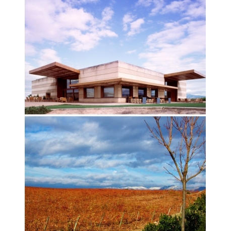 Pictures from Bodegas Juan Alcorta (Rioja - Spain)