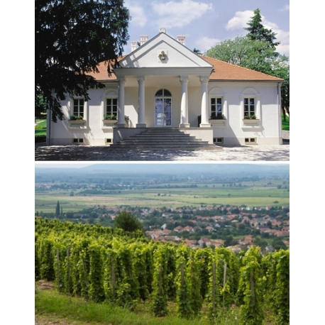Pictures from Oremus Tokaji (Tokaji - Hungary)