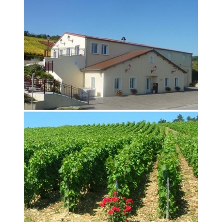 Pictures from Champagne Boulachin-Chaput (Champagne - France)