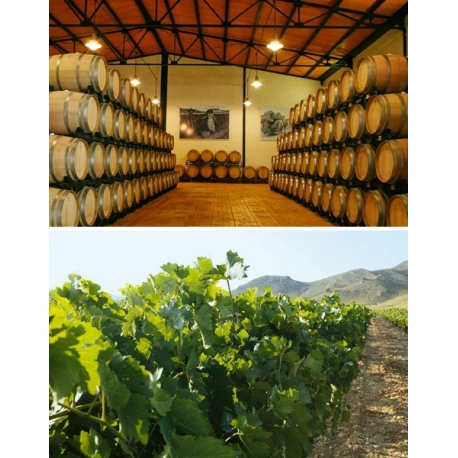 Pictures from Hacienda del Carche (Jumilla - Spain)