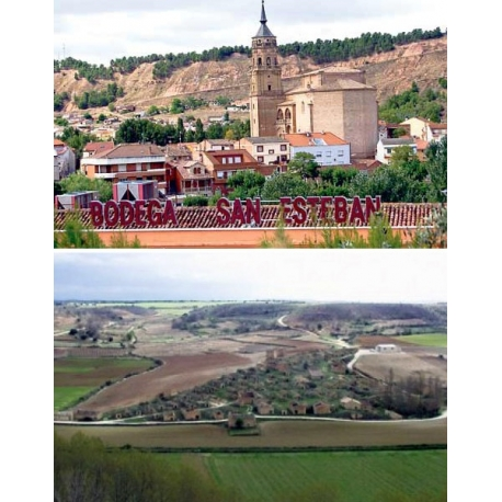 Pictures from Bodegas San Esteban (Rioja - Spain)