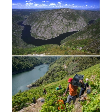 Pictures from Régoa (Ribeira Sacra - Spain)