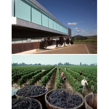 Pictures from Bodegas Habla (V.T. Extremadura - Spain)