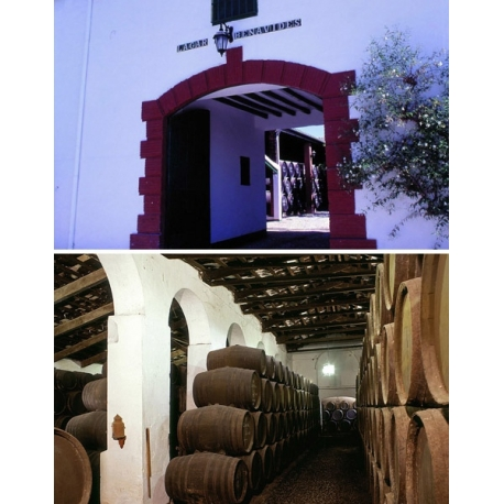 Pictures from Bodegas Málaga Virgen (Málaga - Spain)