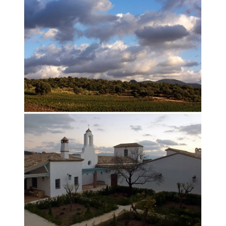 Pictures from Cortijo Los Aguilares (Málaga - Spain)