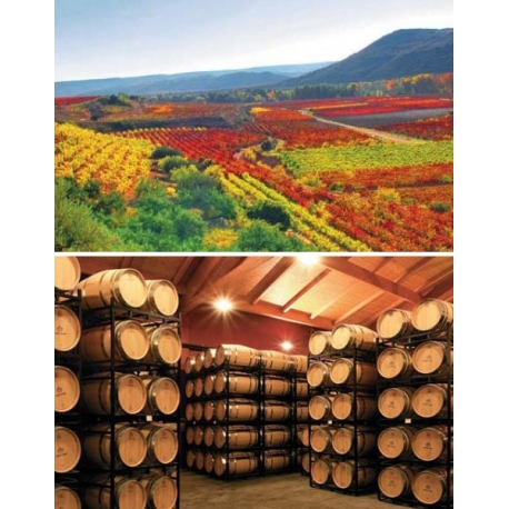 Pictures from Bodegas Lar de Paula (Rioja - Spain)