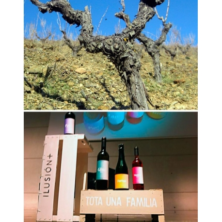 Pictures from Ilusión+ (Cava - Spain)