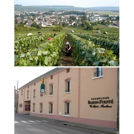 Pictures from Champagne Baron-Fuenté (Champagne - France)