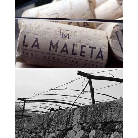 Pictures from La Maleta Wines (Rías Baixas - Spain)