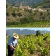 Pictures from Celler Mas Doix (Priorat - Spain)