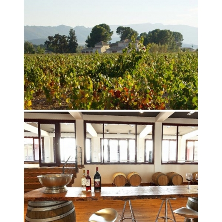 Pictures from Bodegas Barahonda (Yecla - Spain)