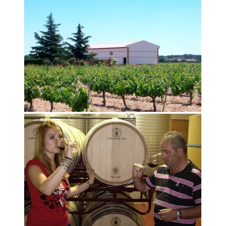 Pictures from Bodegas Gil Luna (Toro - Spain)