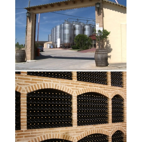Pictures from Bodegas Fontana (Tierra de Castilla - Spain)