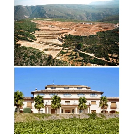 Pictures from Bodegas Vegamar (Valencia - Spain)