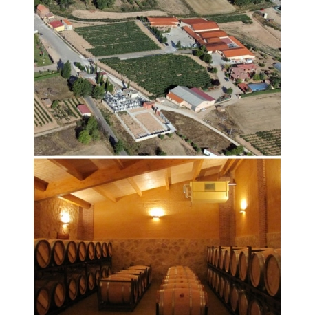 Pictures from Viña Sastre (Ribera del Duero - Spain)