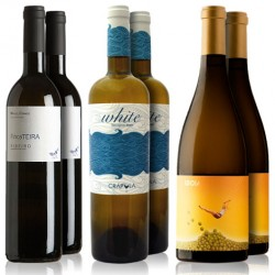 Spanish Whites Road July-August 2017